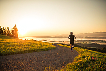 Runners on an empty path in the morning hours, running, sports, general