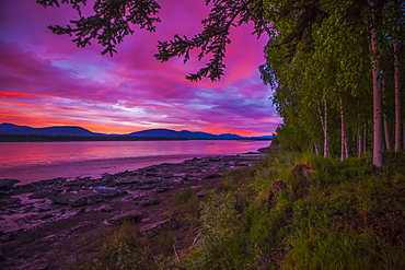 Sunset/sunrise in early June on the Yukon River in summer, Alaska, United States of America