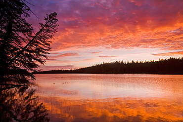 Glad Lake with brilliant colours at sunset, Duck Mountain Provincial Park, Manitoba, Canada