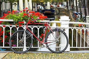 Bike along white metal railing on stone bridge with colourful flowers in box and canal in the background below, Delft, South Holland, Netherlands