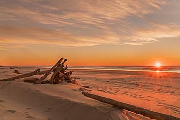 Driftwood on Heceta Beach taken at sunset, Florence, Oregon, United States of America