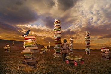 A boy standing in a field with a wagon looking at piles of books, composite image