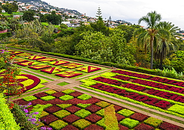 Formal flower beds in Madeira Botanical Gardens, Funchal, Madeira, Portugal