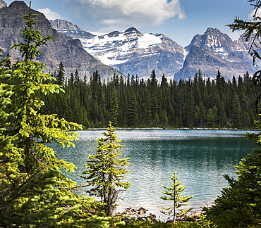 Alpine lake framed by trees with mountain range in the background, British Columbia, Canada