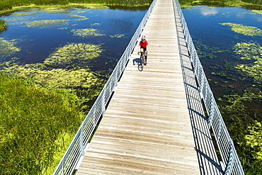 A female cyclist on a bridge crossing a swampy pond, East of Calgary, Alberta, Canada