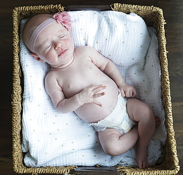 Portrait of a newborn baby in a basket, Surrey, British Columbia, Canada