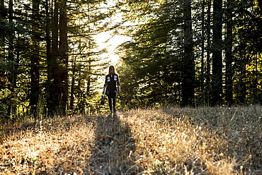 A woman walks across a field in a forest at dusk, Purisima Creek Redwoods, California, United States of America