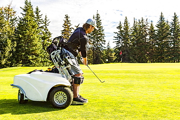 A physically disabled golfer chipping a ball onto the green and using a specialized golf assistance motorized hydraulic wheelchair, Edmonton, Alberta, Canada