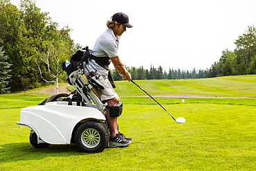 A physically disabled golfer driving a ball on a golf green and using a specialized golf assistance motorized hydraulic wheelchair, Edmonton, Alberta, Canada