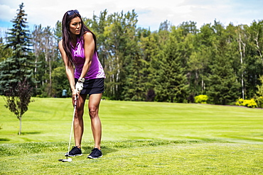 A female golfer lines up her putt her ball on the green on a warm summer day at a golf course, Edmonton, Alberta, Canada