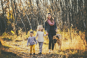 A beautiful mom and her two little daughers walking their Great Dane through the woods in a city park on a warm fall evening, Edmonton, Alberta, Canada