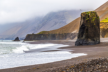 A remote black sand beach and rocky sea stack in Eastern Iceland in the summer fog, Iceland