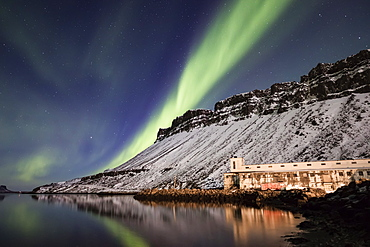 Aurora Borealis, or Northern lights, Djupavik, West Fjords, Iceland