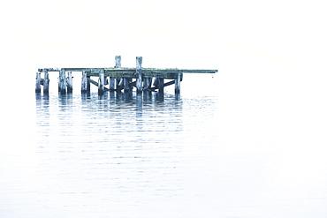 The old dock in the water near Djupavik, Djupavik, West Fjords, Iceland
