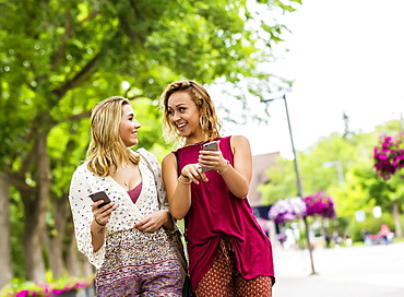 Two young women walk down a path on a university campus laughing and talking together as they look at their smart phones, Edmonton, Alberta, Canada