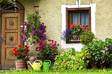 House with colourful flowers blooming and a wooden front door, Dobbiaco, Bolzano, Italy