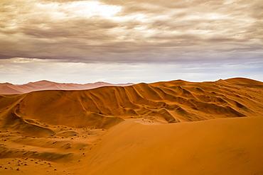Red sand dunes in the Namib desert under a cloudy sky, Namib-Naukluft National Park, Sossusvlei, Hardap Region, Namibia
