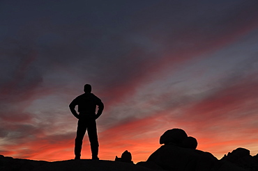Silhouette of a man watching the sunset in Joshua Tree National Park, California, United States of America