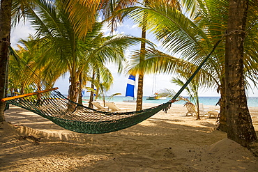 Empty hammock on a tropical beach, Negril, Jamaica