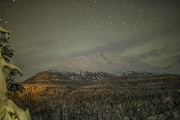 Light pollution illuminates a spruce forest on a mountainside on a starry night with snow covering the mountain ridge in the distance, Kenai Peninsula, South-central Alaska, Moose Pass, Alaska, United States of America
