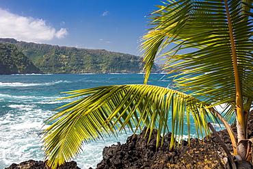 Maui's lush East side cliffs along the road to Hana, Keanae, Maui, Hawaii, United States of America