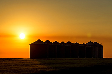 Silhouette of large metal grain bins at sunrise with an orange sun and an orange cast sky, East of Calgary, Alberta, Canada