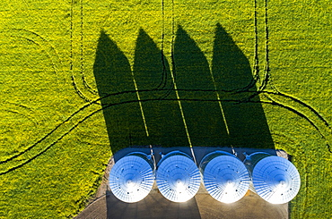 Directly above large metal grain bins in a green field of canola with long dramatic shadows across the field, East of Calgary, Alberta, Canada