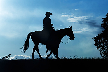 Silhouette of a cowboy riding a horse against a blue sky with cloud, Montana, United States of America