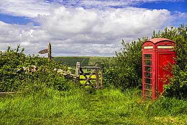 An old fashioned telephone box next to a path in the countryside, Dorset, England