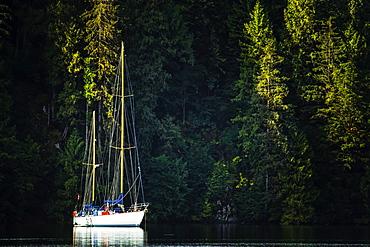 Sailboat in the Great Bear Rainforest at sunrise, Hartley Bay, British Columbia, Canada