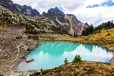 Upper Royal Basin with The Needles and Mt. Clark in the background, Olympic Mountains, Olympic National Park, Washington, United States of America