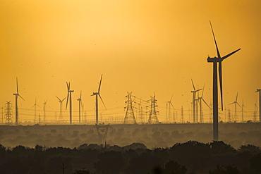 Wind farm in Northern India, Rajasthan, India