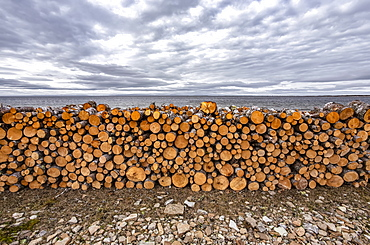 Piled fire logs, near St Anthony, Newfoundland and Labrador, Canada