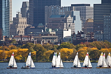 Sailboats in the river with skyscraper in the background, Charles River, Back Bay, Boston, Suffolk County, Massachusetts, USA