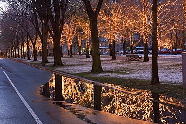 Christmas decoration, Commonwealth Avenue Mall, Boston, Suffolk County, Massachusetts, USA