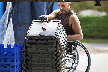 Loading dock worker with spinal cord injury in a wheelchair moving stacked inventory trays