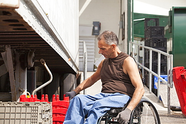 Loading dock worker with spinal cord injury in a wheelchair stacking inventory trays