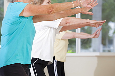 Senior people exercising in an exercising class - 1116-49567