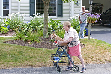 Senior man watering flowers while neighbor with walker and dog goes by