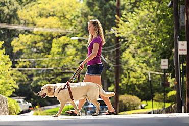 Student with visual impairment and her service dog crossing the street