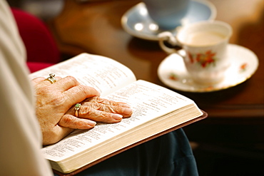 Seniors Studying The Bible