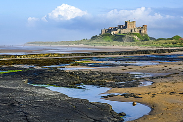 Bamburgh Castle with the tide out showing rocky coastline; Bamburgh, Northumberland, England