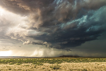 Dramatic dark storm clouds over scrubland; New Mexico, United States of America