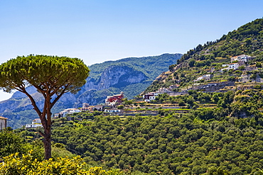 Houses on a hillside in the countryside above the Amalfi Coast; Ravello, Salerno, Italy