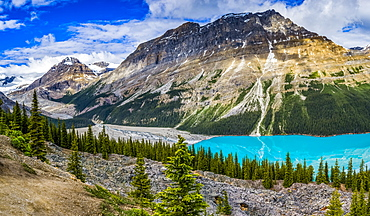 Bright blue water of Peyto Lake in the Rocky Mountains of Banff National Park along the Icefield Parkway; Improvement District No. 9, Alberta, Canada