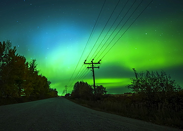 Northern Lights glowing green in the starry sky above a rural road and transmission lines, Sturgeon County; Alberta, Canada