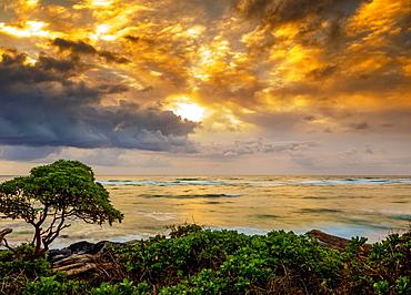 Sunrise over the Pacific Ocean from the shore of Kauai; Kauai, Hawaii, United States of America