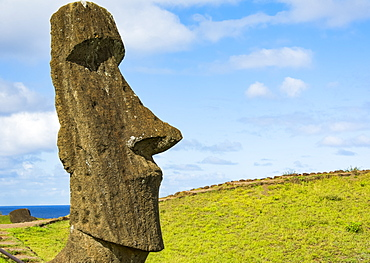 Close-up image showing the head of a standing moai against a blue sky; Easter Island, Chile
