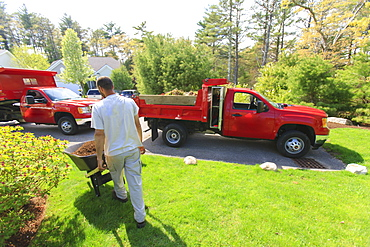 Landscaper moving mulch from a truck
