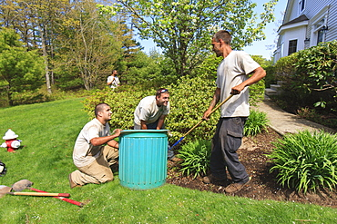 Landscapers clearing weeds in a home garden